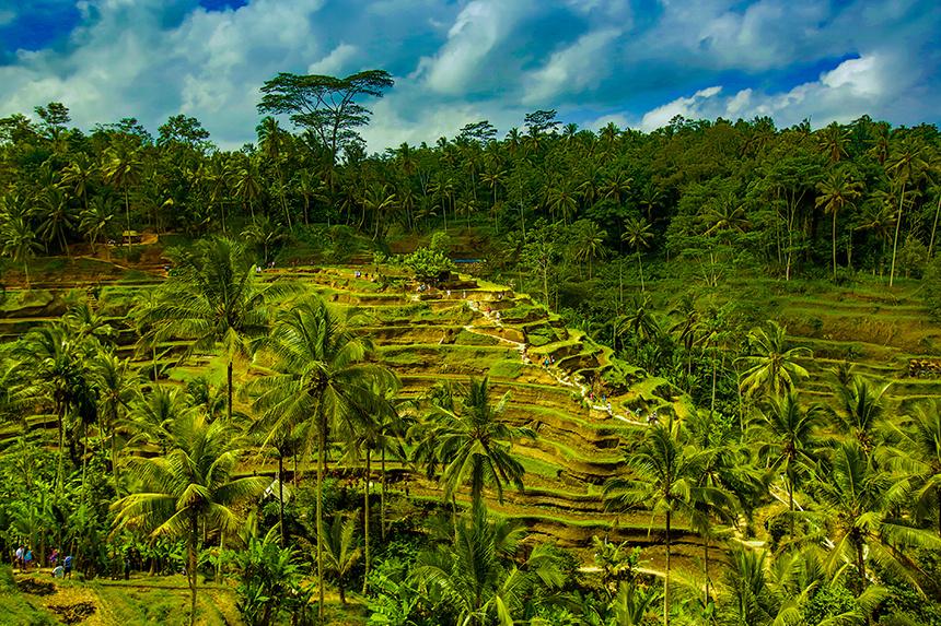 Bali__086