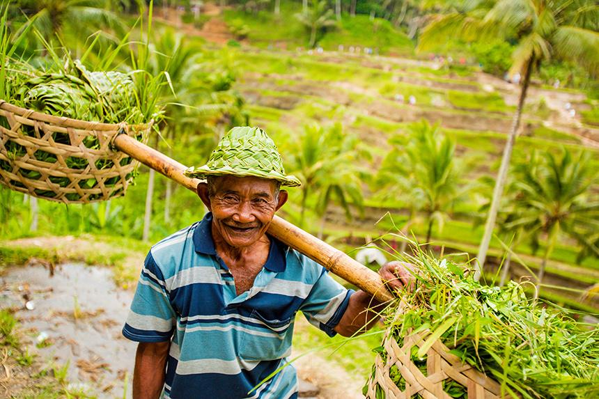 Bali__087