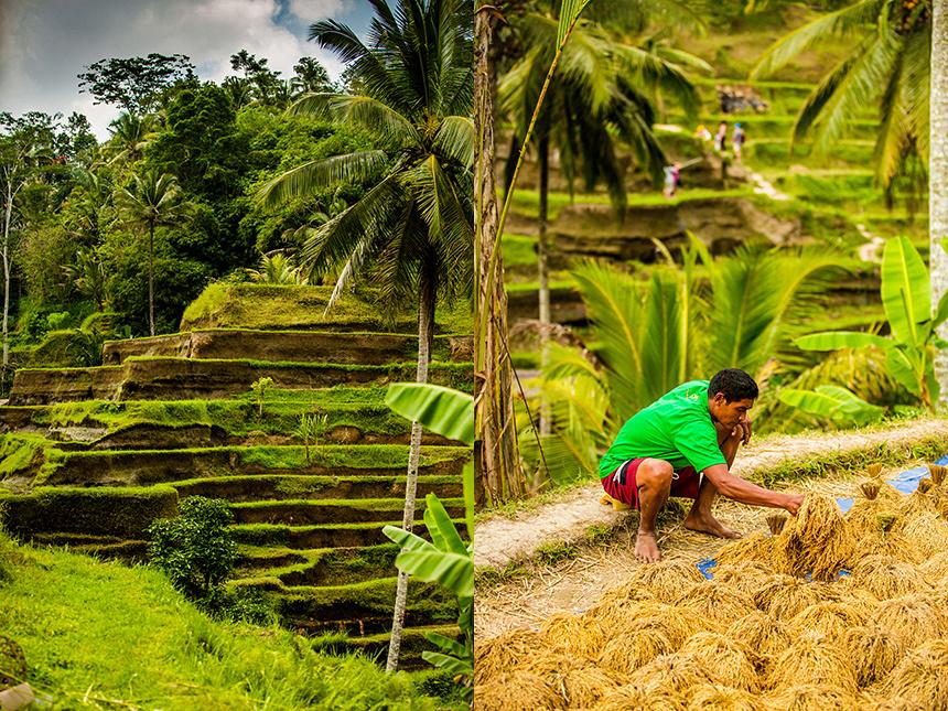 Bali__089