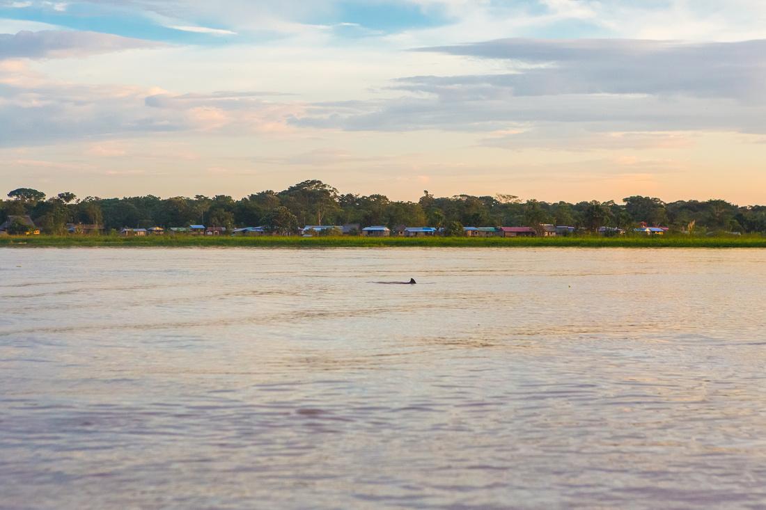 KelliBeePhotography-Peru-Amazon-Day4-0057
