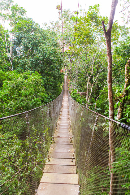 KelliBeePhotography-Peru-Amazon-Day5-0288