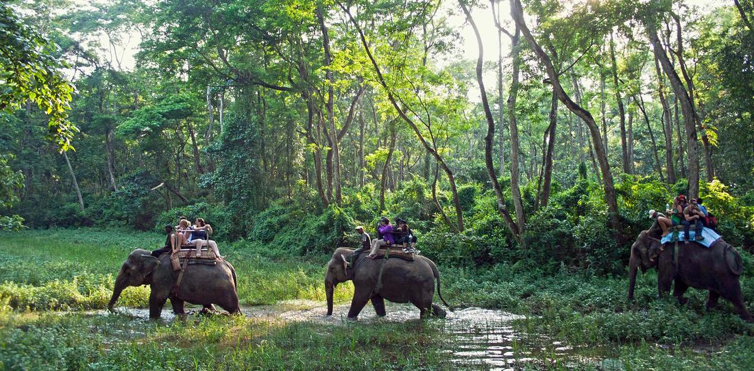 Chitwan.National.Park.original.2800