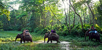 Chitwan.National.Park.original.2800