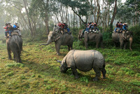 Nepal-Chitwan-National-Park